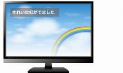 テレビの字幕放送を利用したことがありますか?