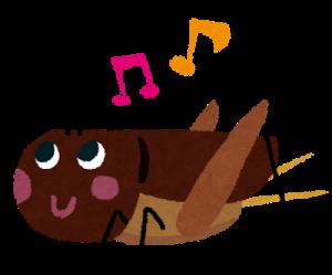 歌うコオロギ